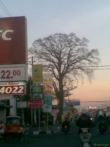 Go home. Solo Street, Yogyakarta. Agustus, 2012