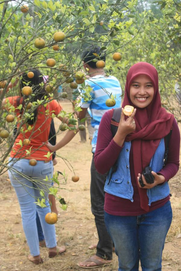 Foto bersama jeruk jeruk yang bergelantungan.