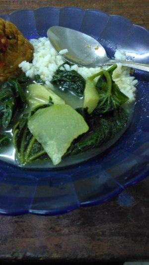 Makanan pertama yang berhasil saya habiskan : Sayur bobor dan tempe