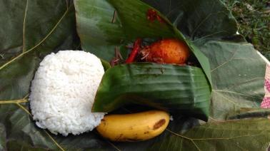 Nasi, oseng klika, telur balado, oseng tempe kedelai hitam, pisang